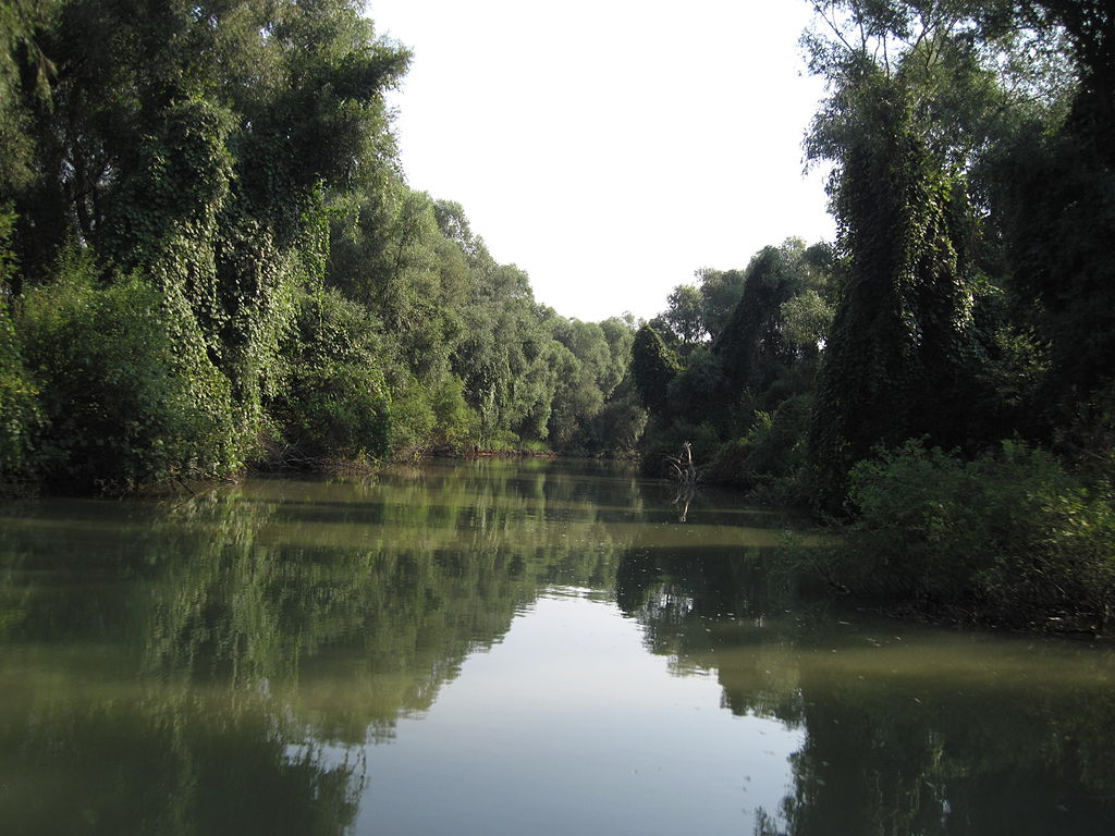 1024px-Canal_in_Delta_Dunarii[1]