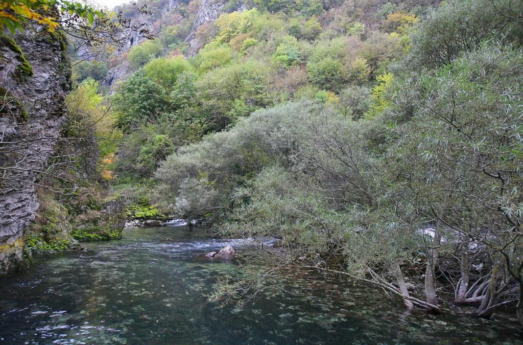 1280px-Bijelog_Drima_(Drina)_27._listopada_2011[1]