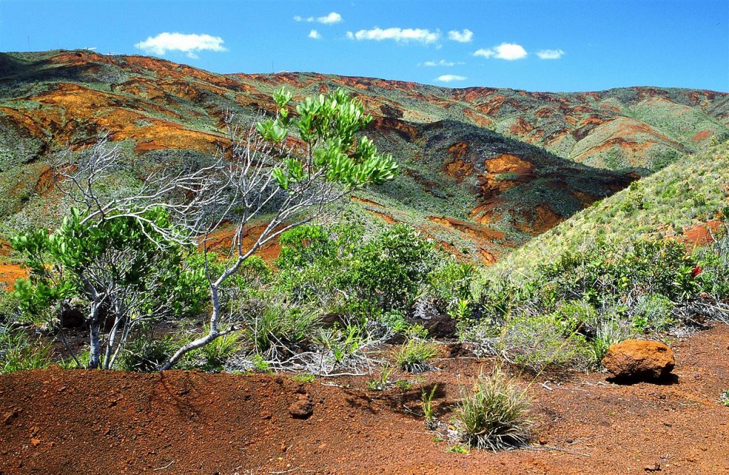 Landscape,_south_of_New_Caledonia