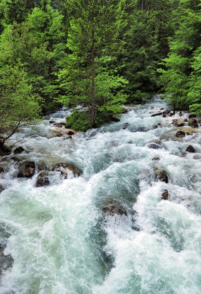 White_water_in_the_Savica[1]