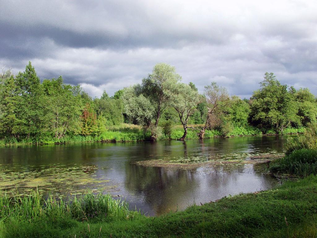 1280px-Nature_of_Volgograd_Oblast_003