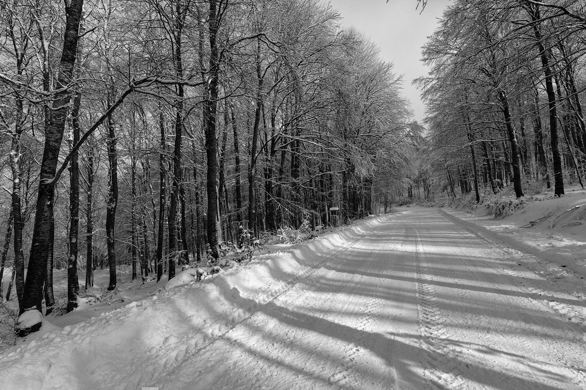 snow-1394022_1920