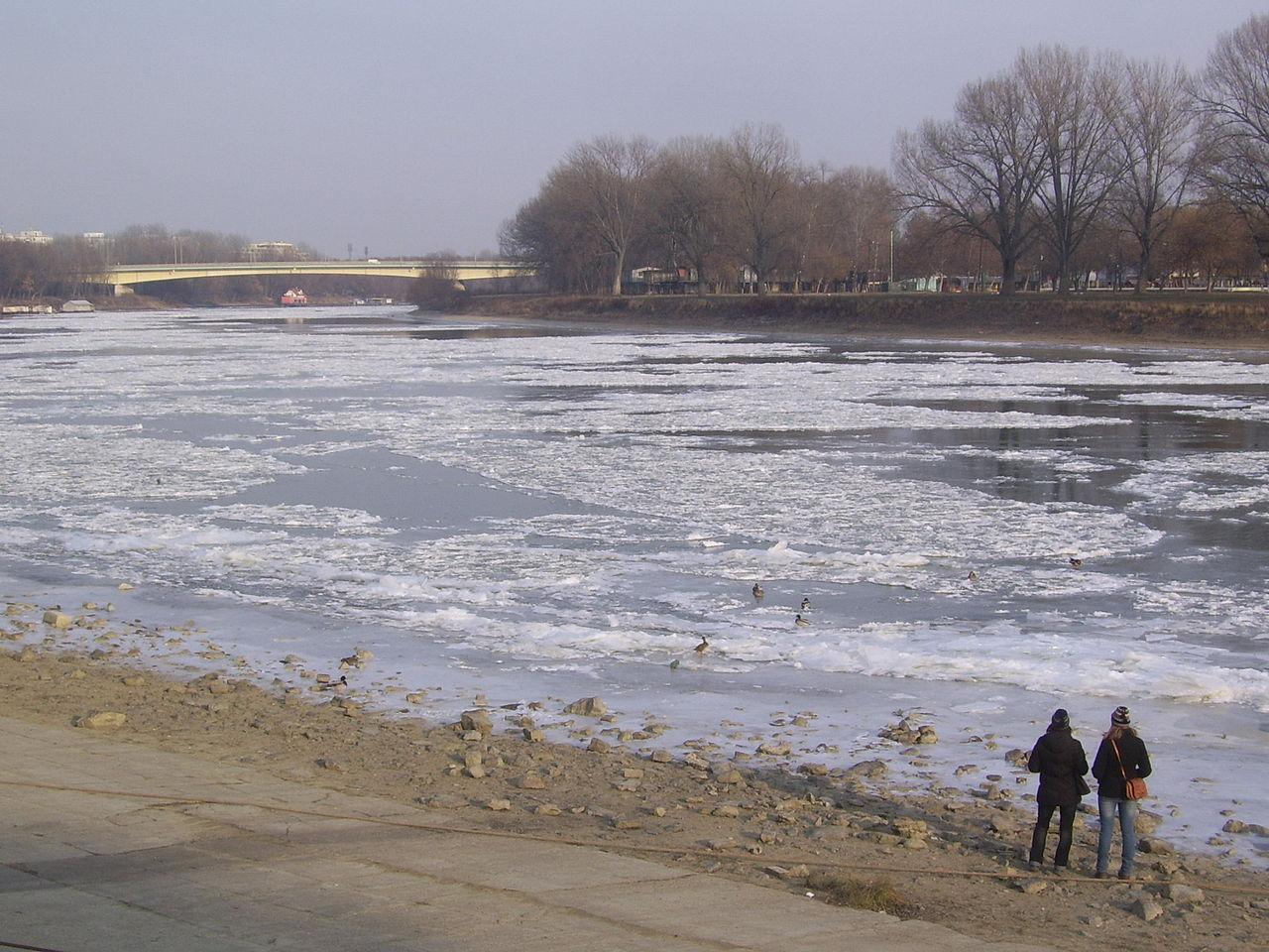 Überfrierende Theiß am 02.02.12