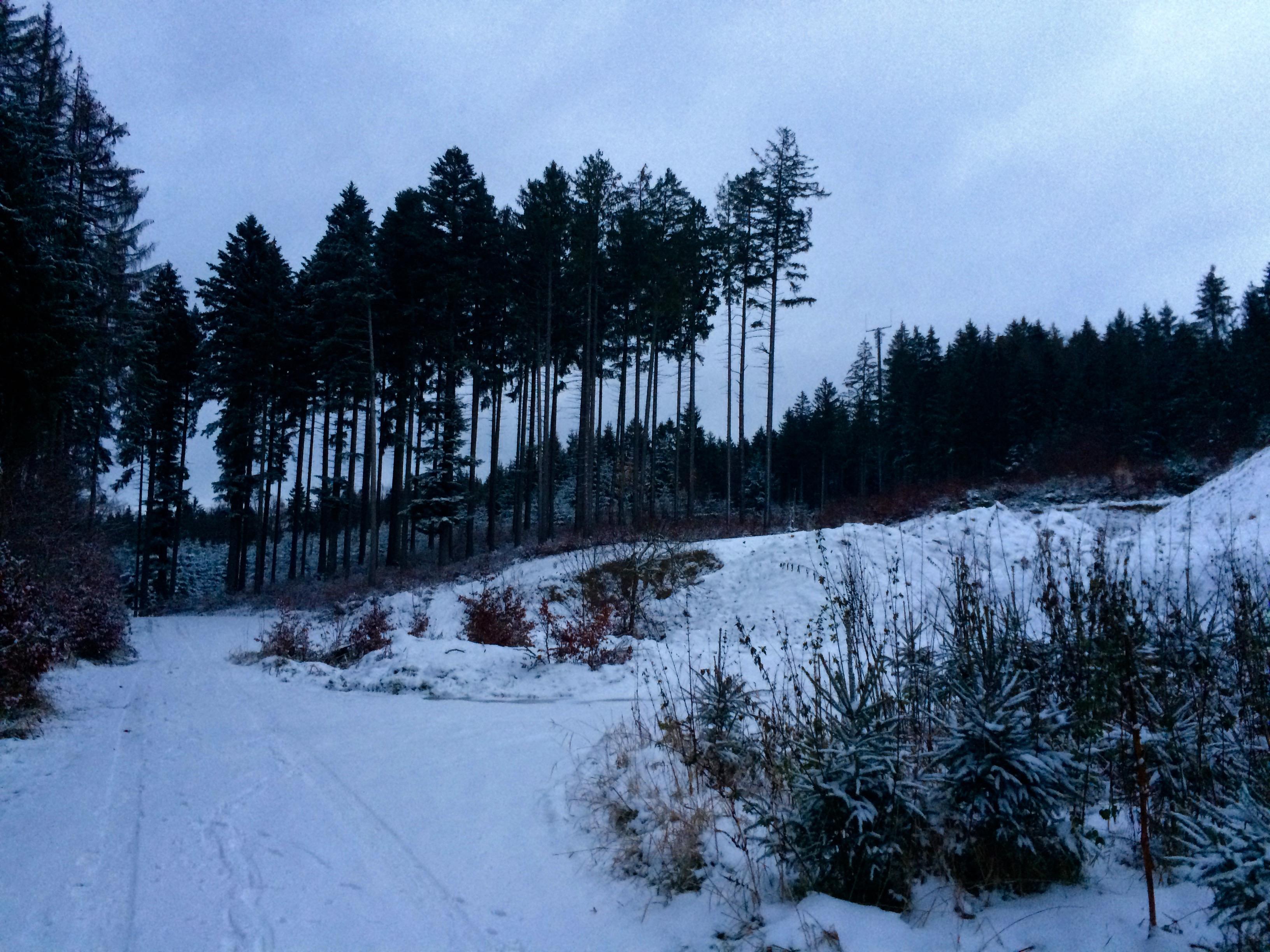 verschneite Kiesgrube am Pitzenberg