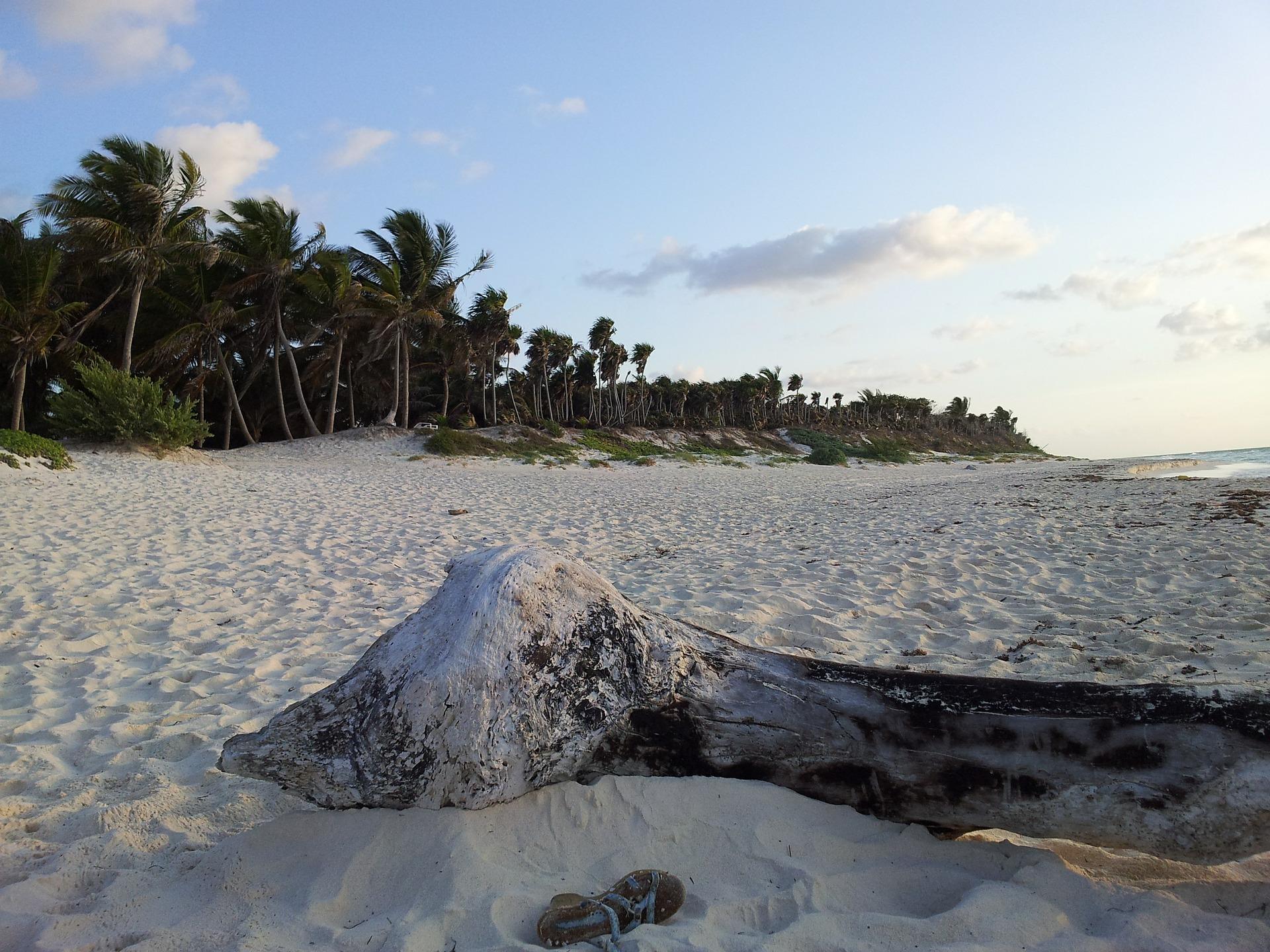 beach-410050_1920