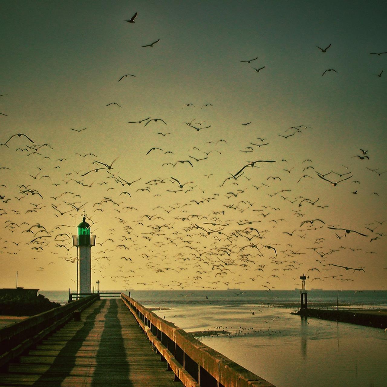 Leuchtturm von Faro