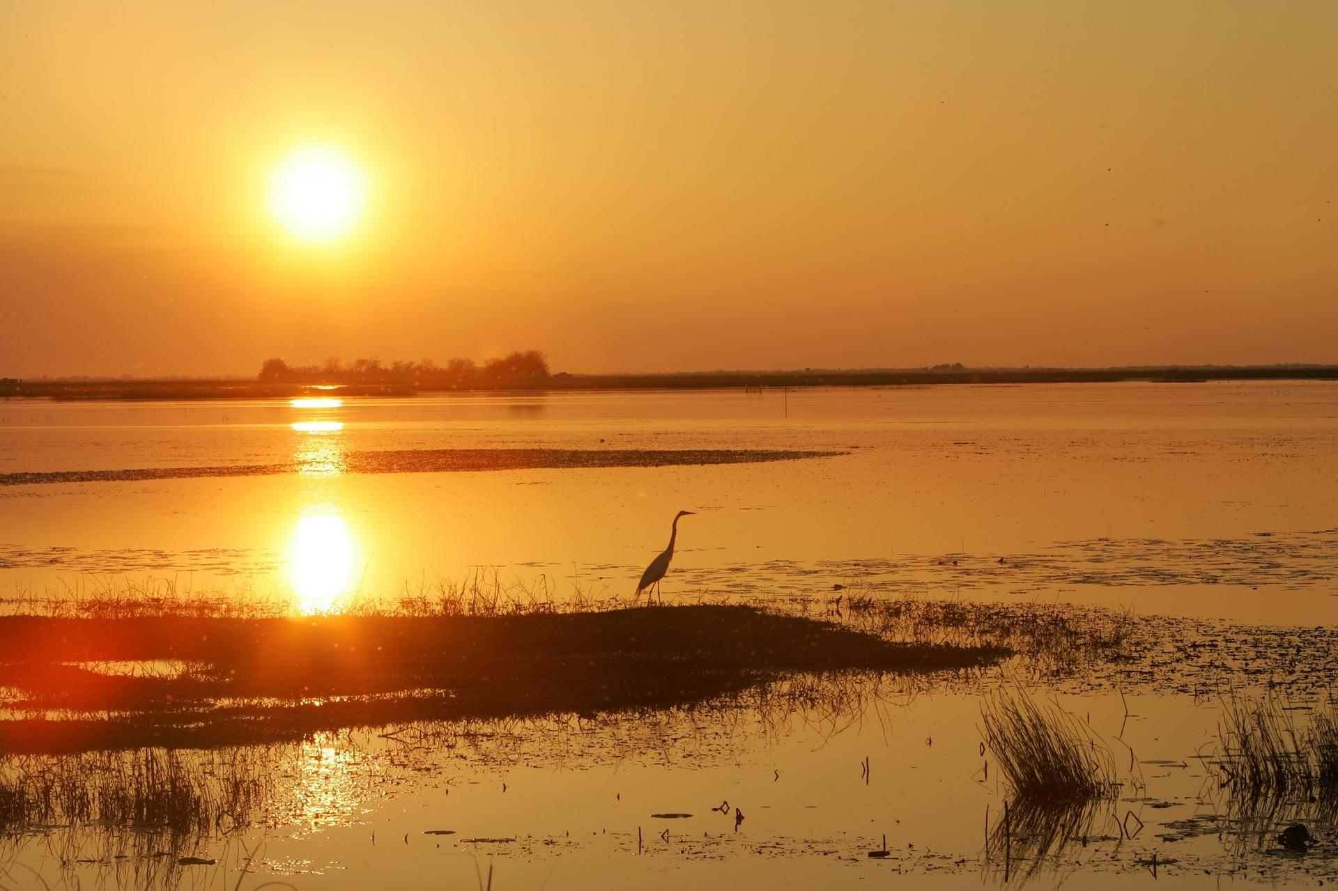 sunset-1049572_1920