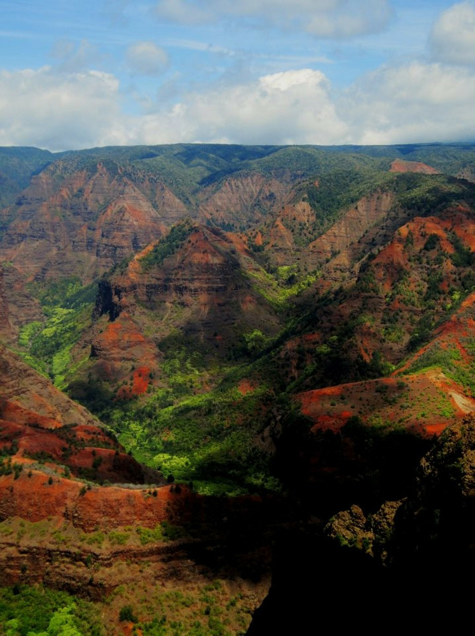 Ein Canyon der es mit den Grand Canyon aufnehmen kann: der Waimea Canyon