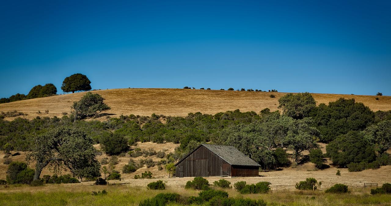 california-1596139_1280
