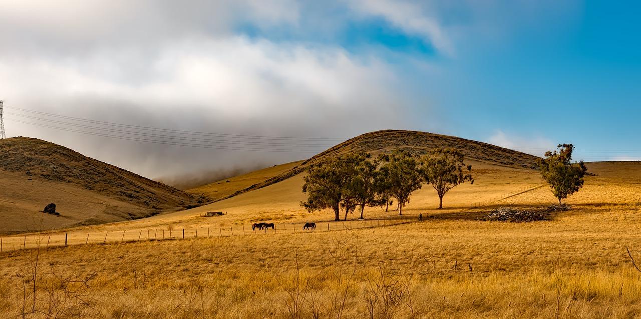 california-1597695_1280