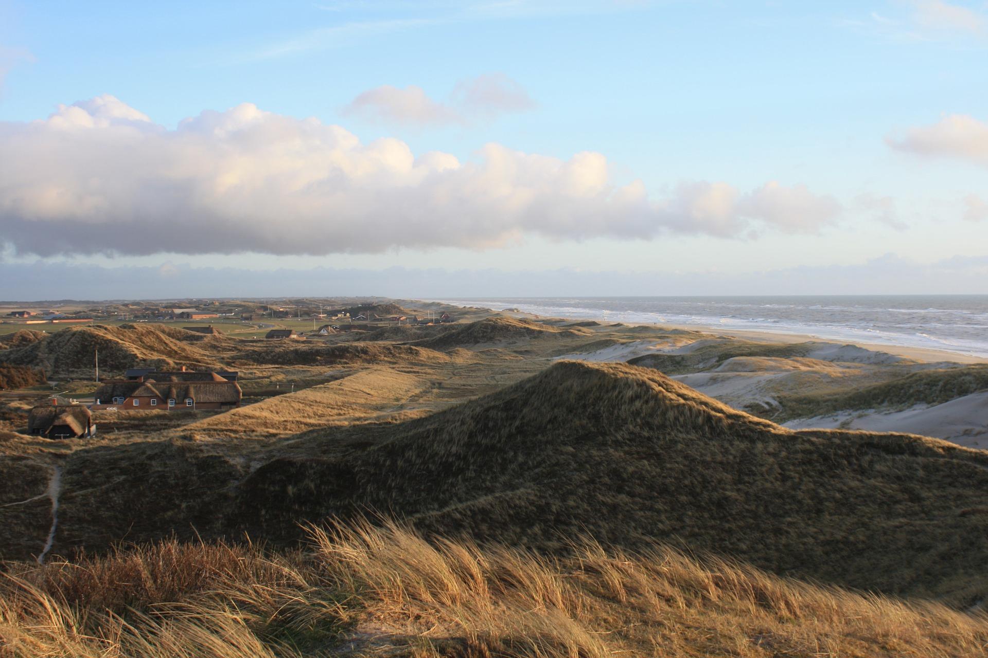 Dünen der Nordseeküste