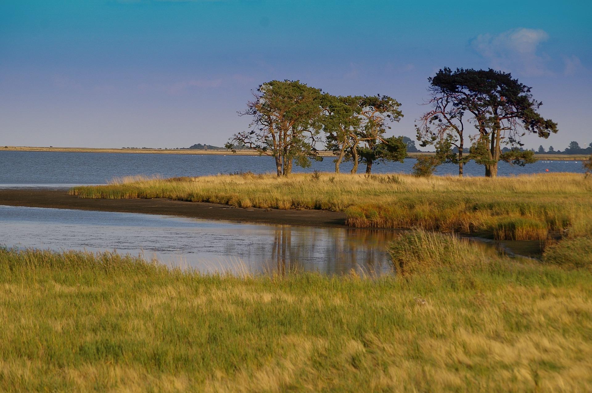 nature-reserve-957474_1920