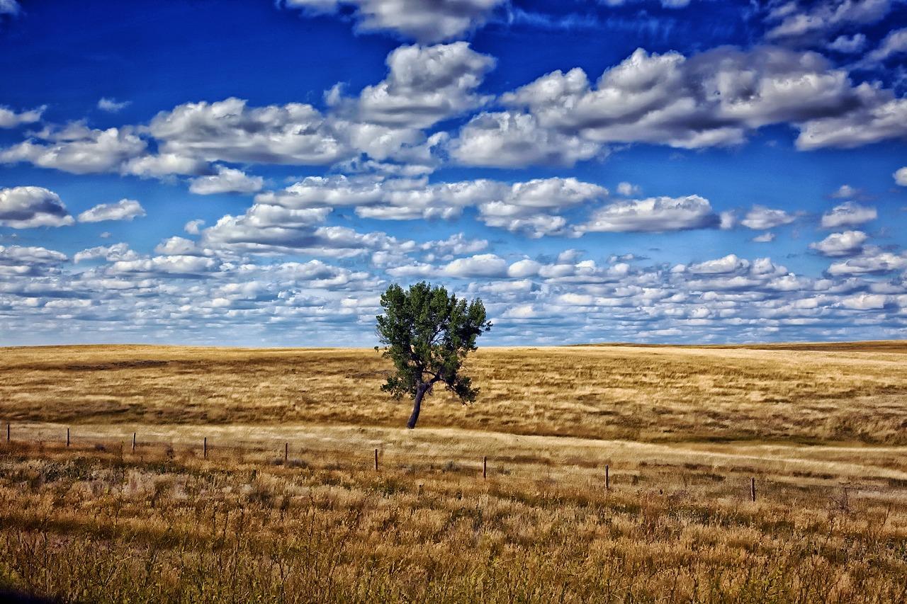 south-dakota-395451_1280