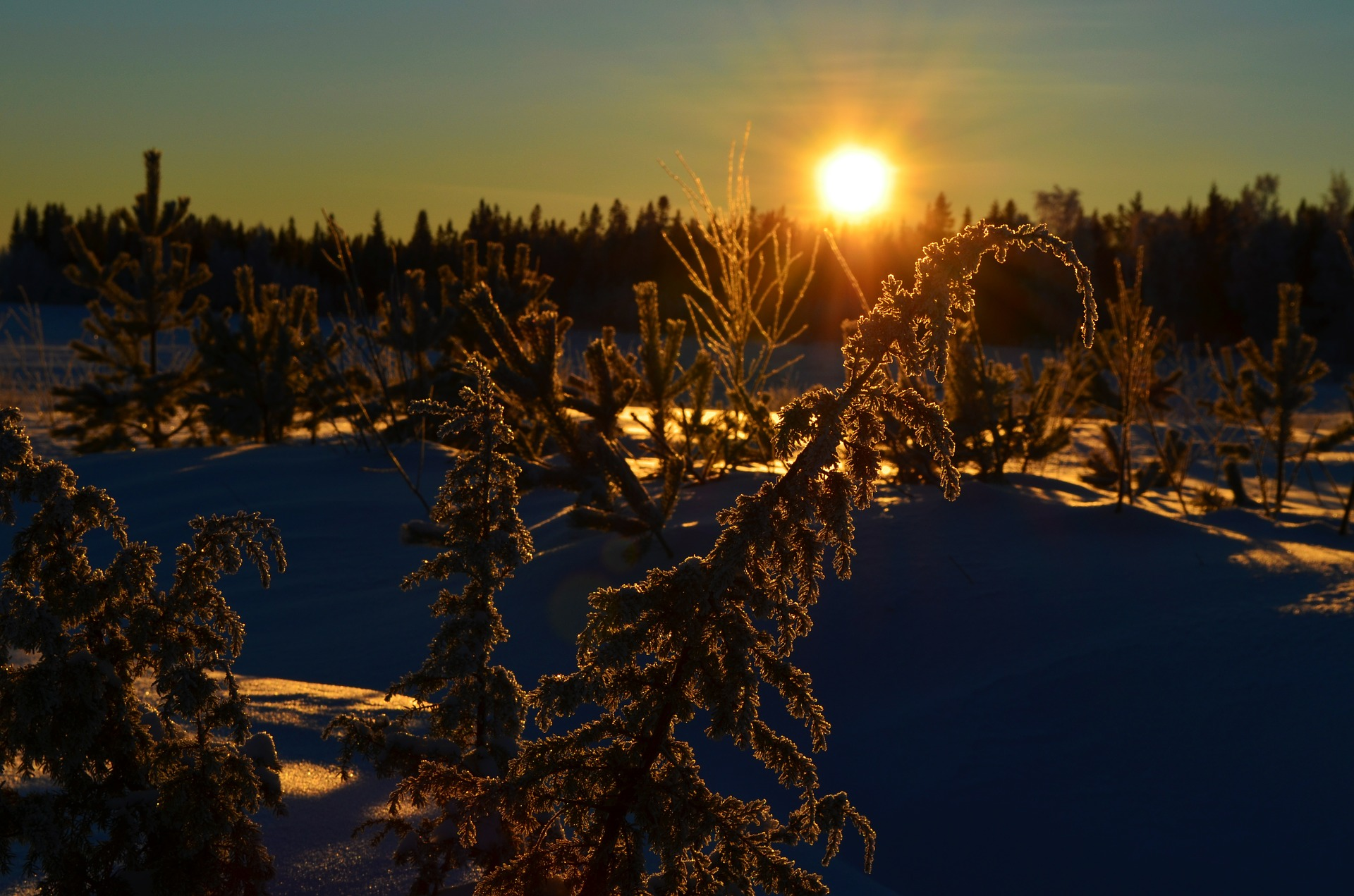 winter-508340_1920