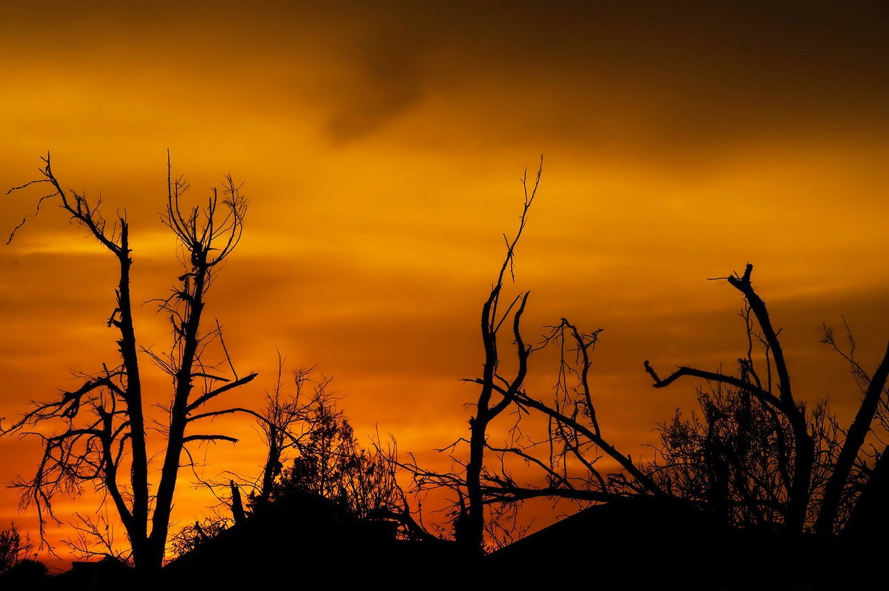 sunset-122712_1280