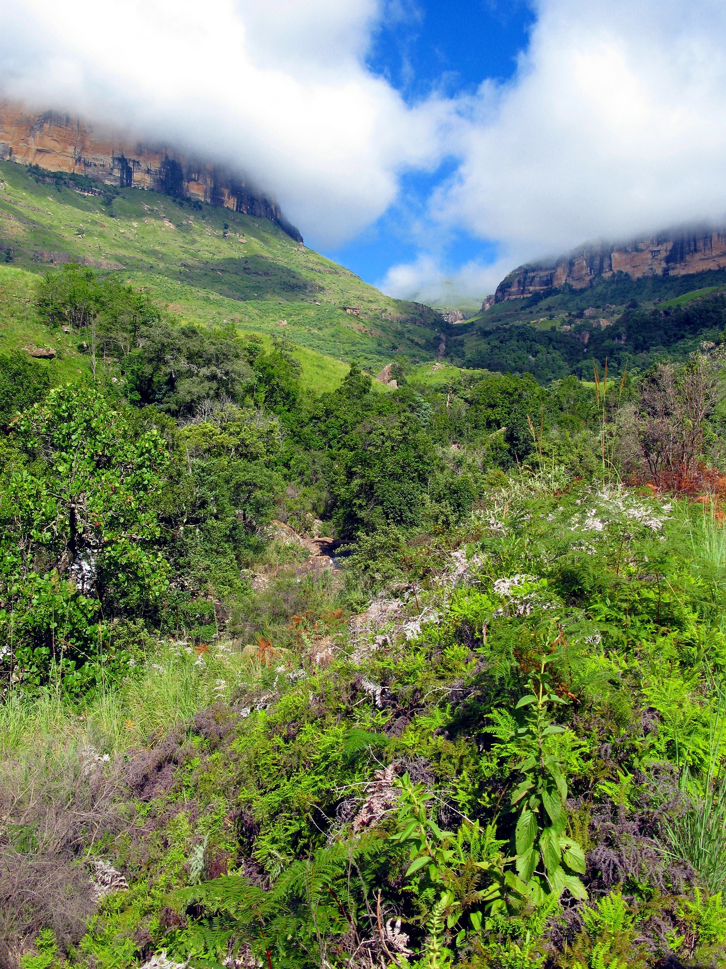 drakensberg-mountains-85659_1920