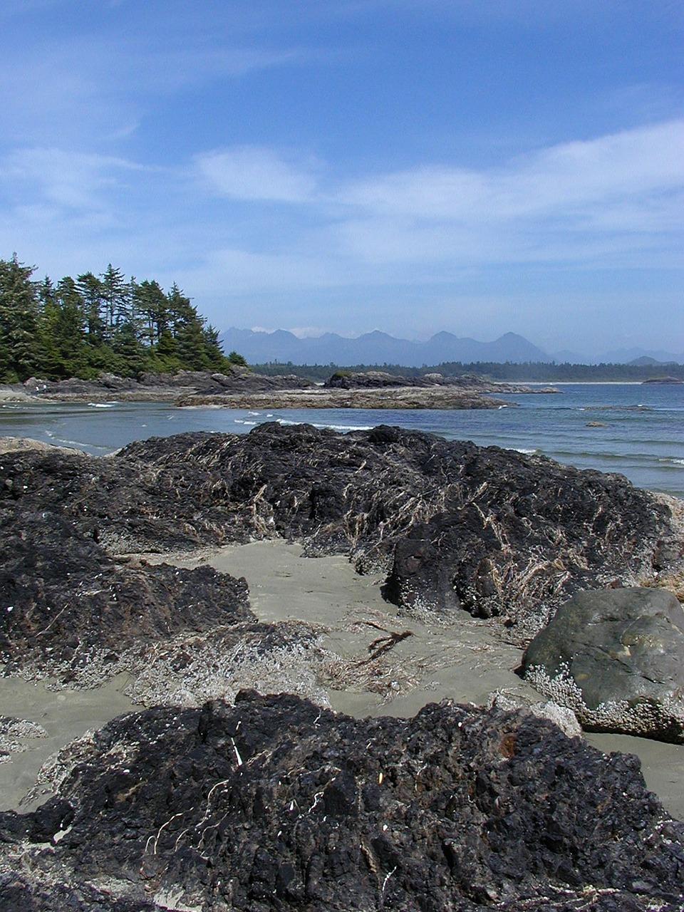 vancouver-island-57185_1280
