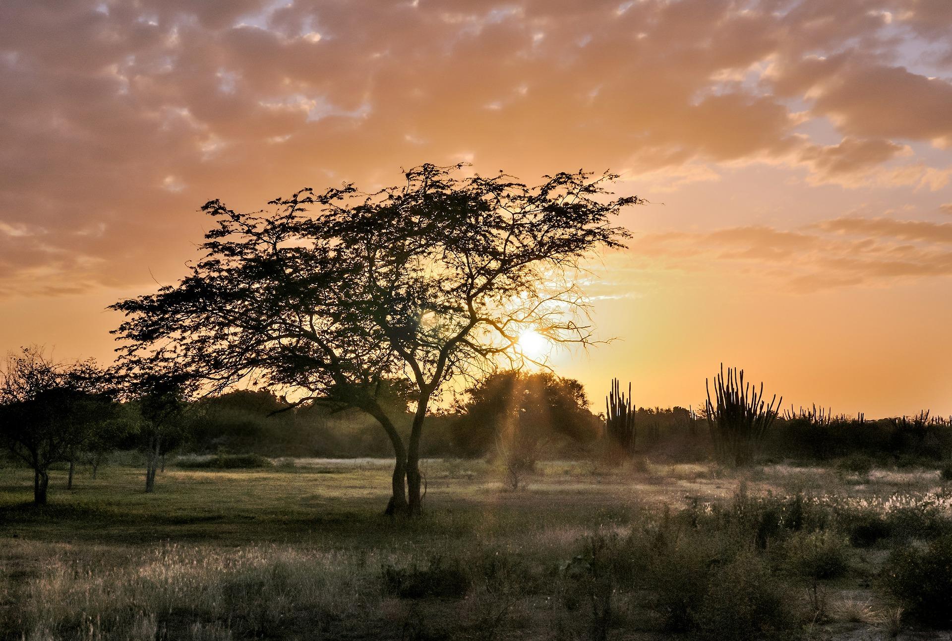 sunset-539510_1920