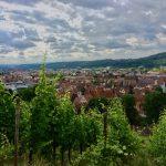 Weinstöcke und Esslingen