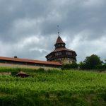 Dicker Turm hinter Weinfeldern
