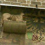 Stauferlöwen mit Wappen