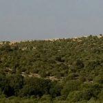 Blick nördlich von Belej auf einen Inselberg