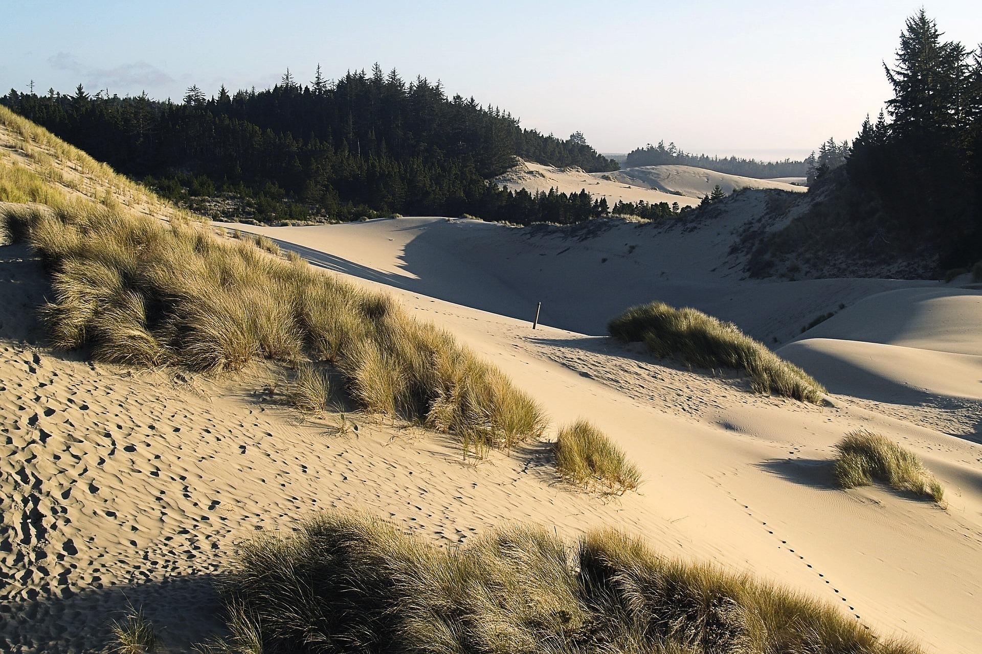 dunes-50068_1920