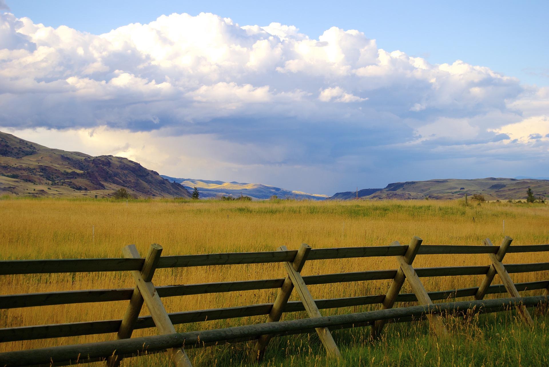 fence-951963_1920