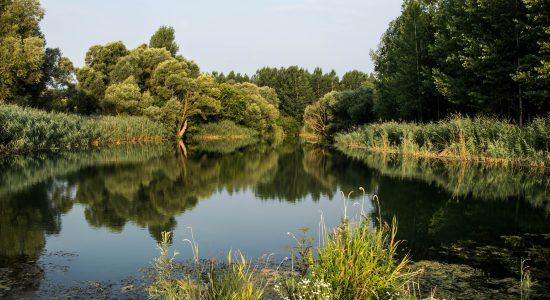 fluss ins kaspische meer